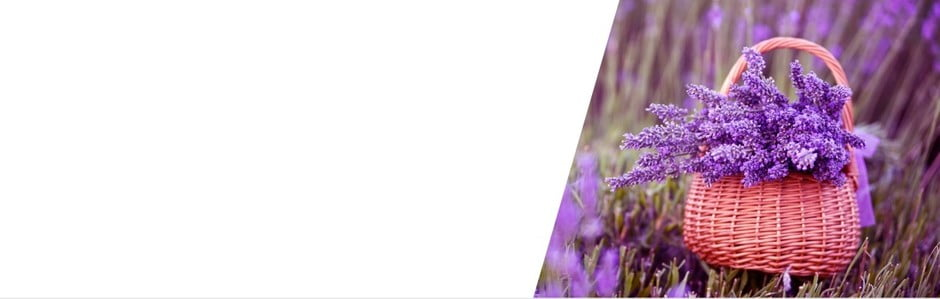 V duchu levanduľového Provensalska