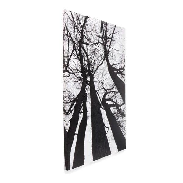 Obraz Tomasucci Winter Tree