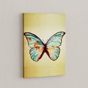 Obraz Šum motýľov, 50x70 cm