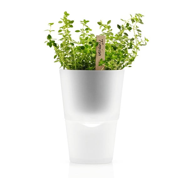 Samopodlievací kvetináč na bylinky Eva Solo Matt, 11 cm