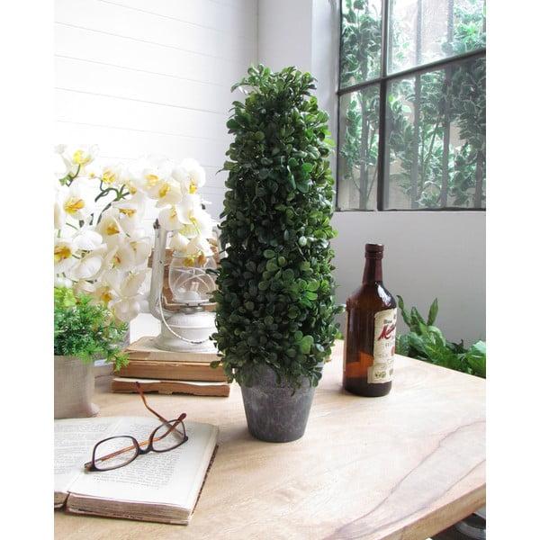 Dekoratívny strom Topiary