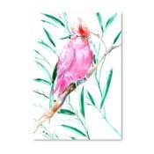 Plagát Cockatoo Pink