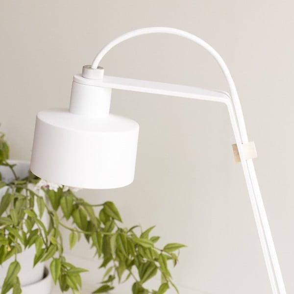 Stolová LED lampa Jazz white/white