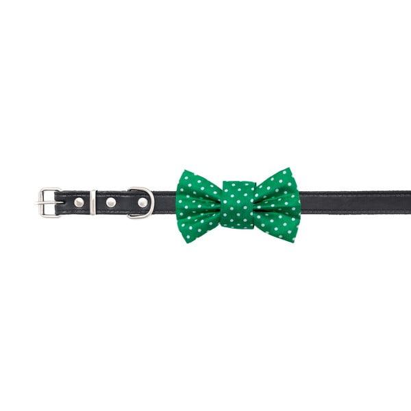 Zelený charitatívny psí motýlik s bodkami Funky Dog Bow Ties, veľ. M