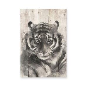 Drevená ceduľa Tiger