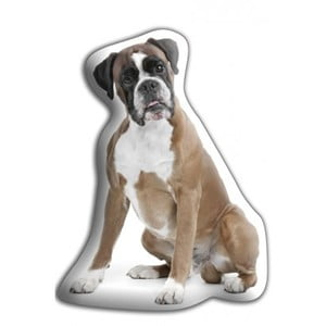 Vankúšik Adorable Cushions Boxer