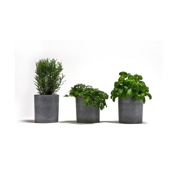 Set 3 betonových kvetináčov Spicepot 13