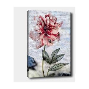 Nástenný obraz na plátne Tablo Center Blooming, 40 × 60 cm