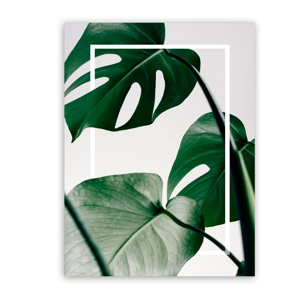 Obraz Styler Canvas Greenery Monstera, 60 × 80 cm
