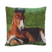Vankúš Horse Appolo, 45x45 cm