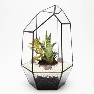 Terárium s rastlinami Gem