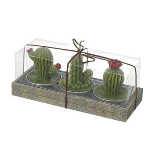 Sada 3 sviečok Heaven Sends Cactus