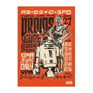 Nástenná ceduľa PosterPlate Star Wars Legends - Droids