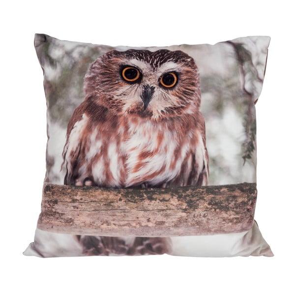 Vankúš Owl Velvet, 45x45 cm