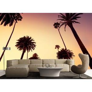 Veľkoformátová tapeta Palmy pri súmraku, 315x232 cm