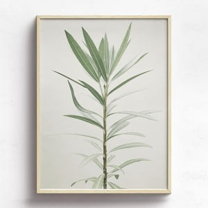 Obraz v drevenom ráme HF Living Lajes, 30 x 40 cm