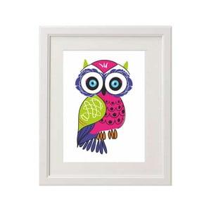 Zarámovaný obraz Owl One