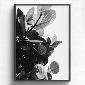 Obraz v drevenom ráme HF Living Banes, 50 x 70 cm