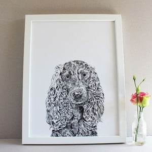 Plagát Chester the Cocker Spaniel, 30x40 cm