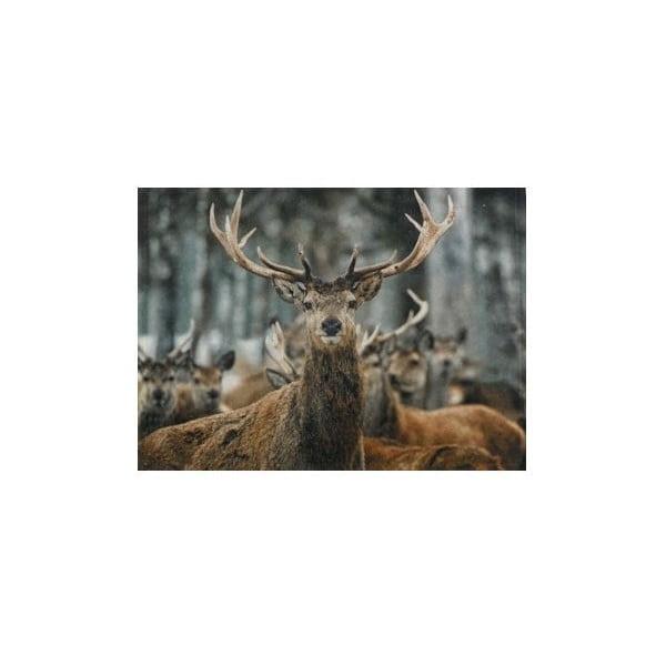 Prestieranie Winter Deer 40x30 cm