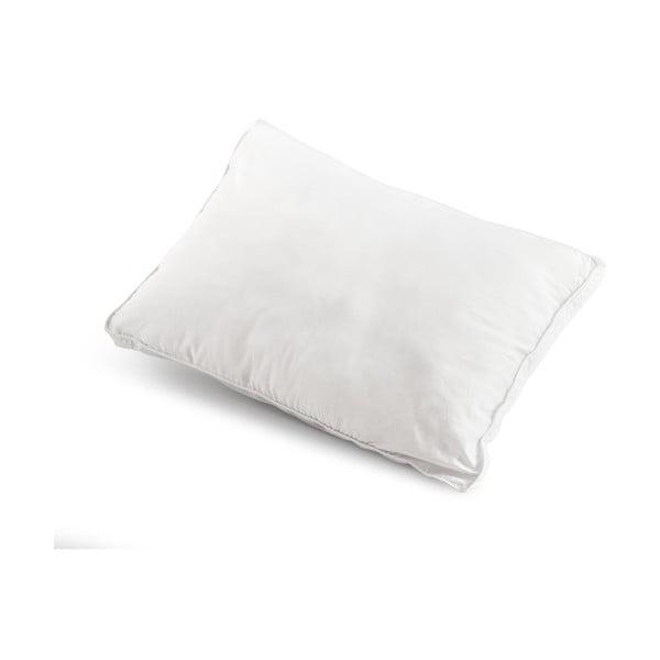 Vankúš na spanie s dutými vláknami Dreamhouse Count, 50x70cm