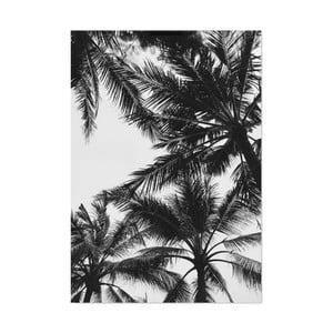 Plagát HF Living Botanic Palms, 21×30 cm