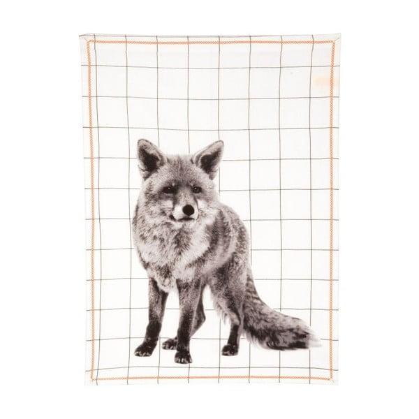 Kuchynská utierka Grid Fox, 50x70 cm