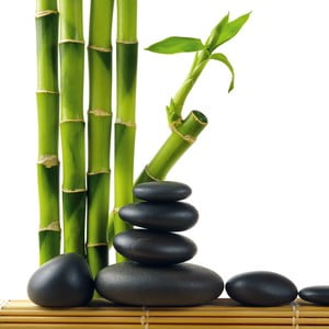 Sklenený obraz Lucky Bamboo, 30x30 cm