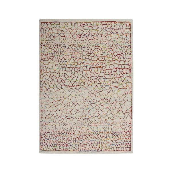 Koberec Desire Multi 80x150 cm, farebný