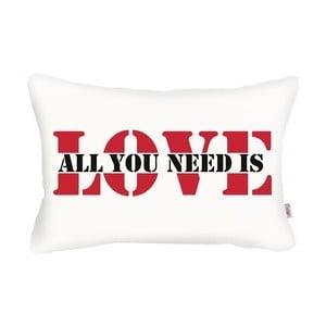 Biela obliečka na vankúš Apolena Love Addict, 31 x 50 cm
