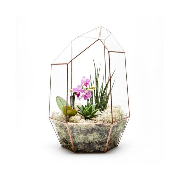 Terárium s rastlinami Supersize Gem, svetlý rám