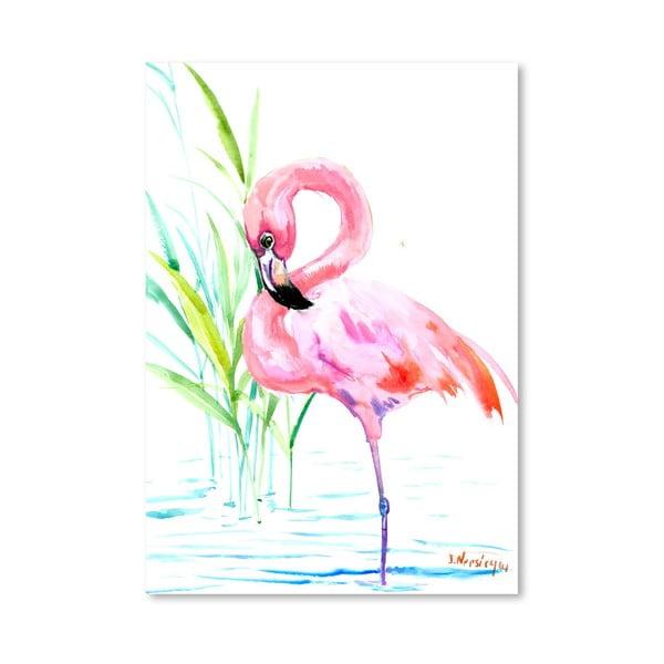 Plagát Flamingo