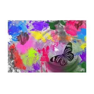 Obraz Butterfly Drops, 45 x 70 cm