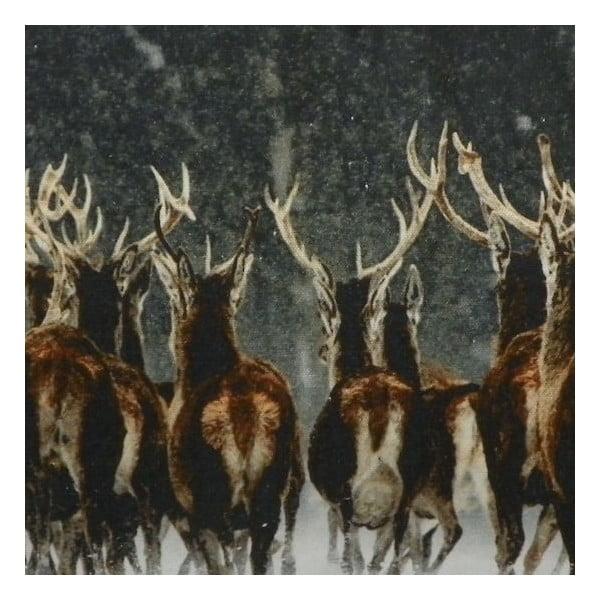 Vankúš Deer Racing 50x35 cm