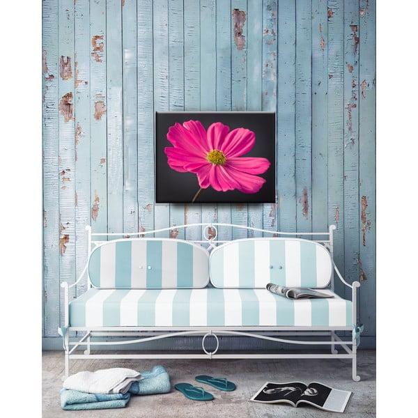Obraz Flower, 50x65 cm