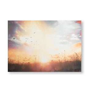 Obraz Graham & Brown Serene Sunset Meadow, 100 × 70 cm