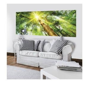 Veľkoformátová nástenná tapeta Vavex Sunlight, 250×104 cm