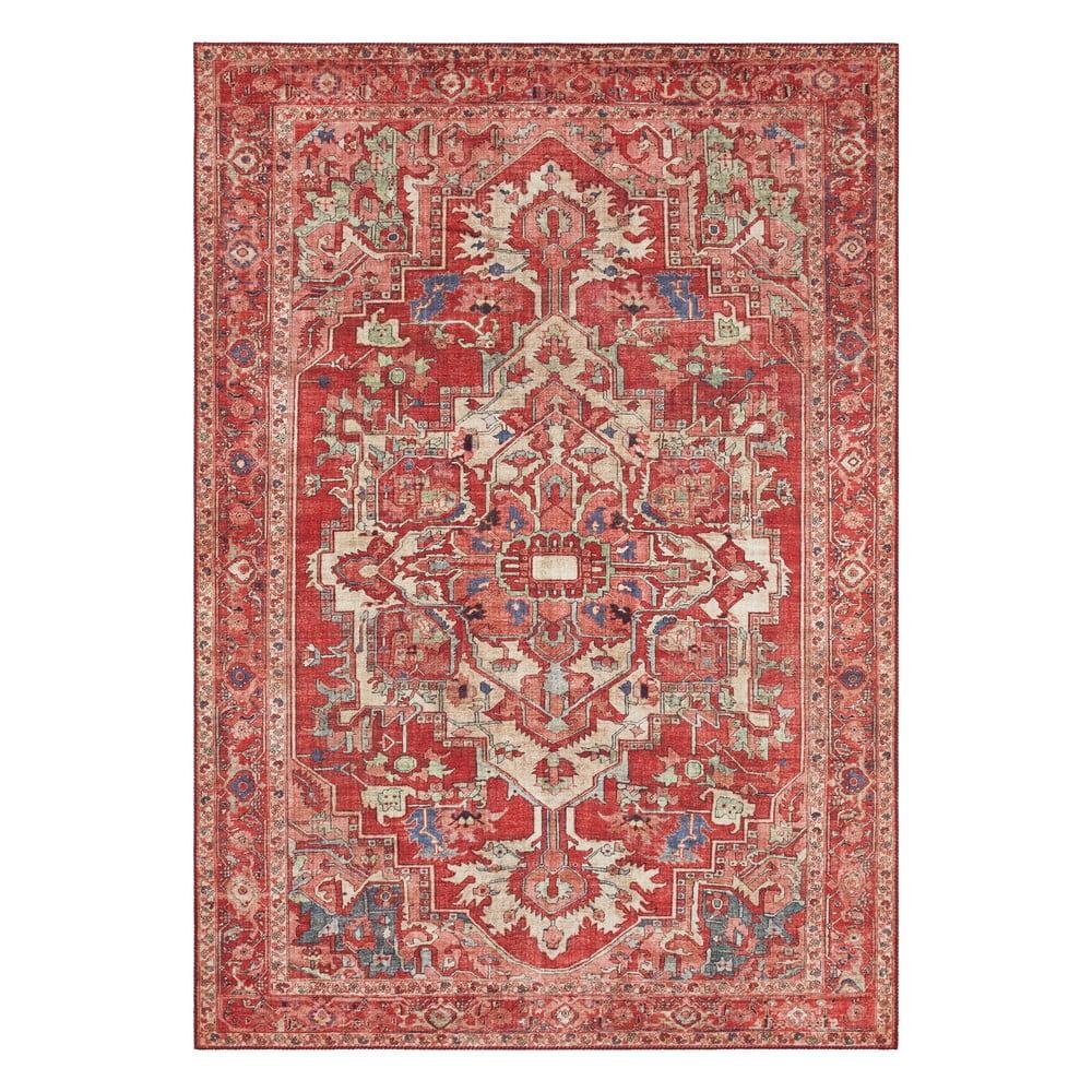 Červený koberec Nouristan Leta, 120 x 160 cm