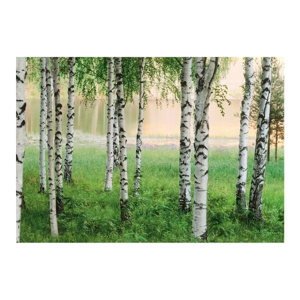 Veľkoformátová tapeta  Severský les, 366x254 cm
