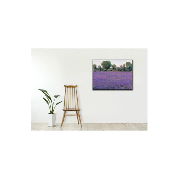 Obraz Lavender, 60x80 cm