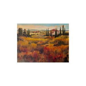 Obraz Tuscany, 60x80 cm
