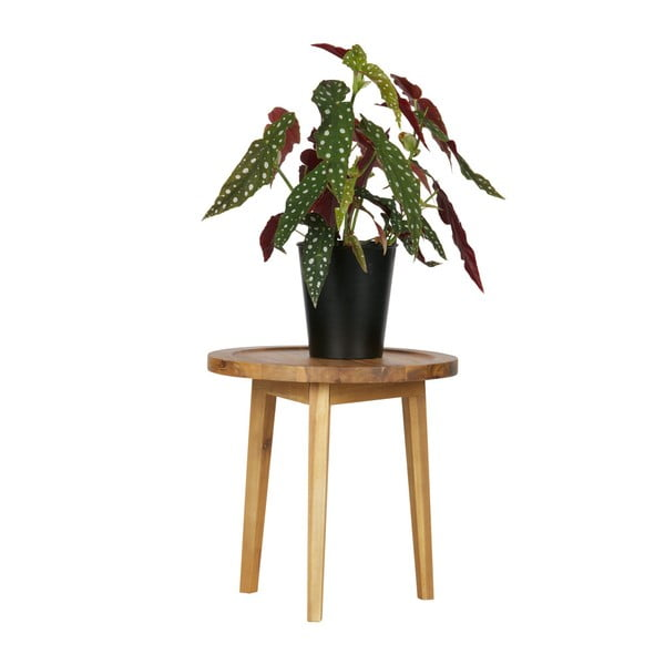 Prírodná stolička vtwonen Sprokkeltafel