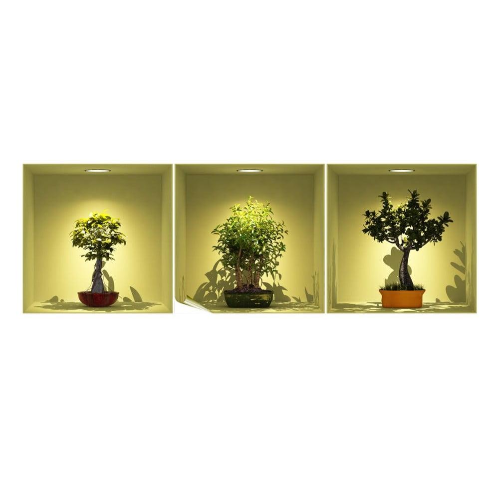 Sada 3 samolepiek s 3D efektom Ambiance Bonsai Trees On Spot