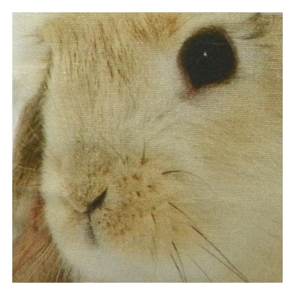Vankúš Christmas Rabbit 50x50 cm