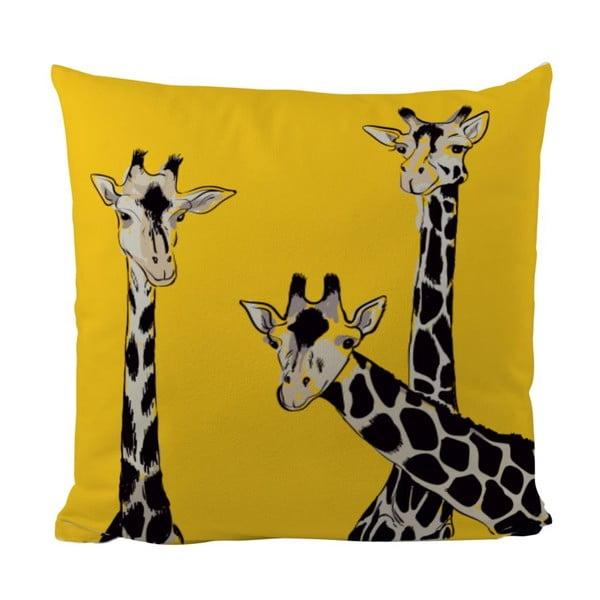 Vankúš Friendly Giraffes, 50x50 cm
