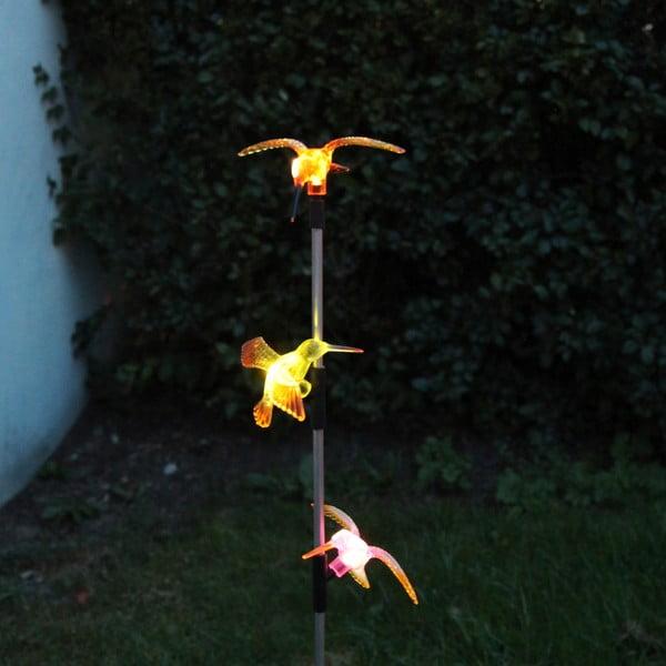 Solárna záhradná LED dekorácia Best Season Hummingbirds