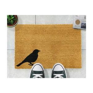 Rohožka Artsy Doormats Bird, 40 × 60 cm