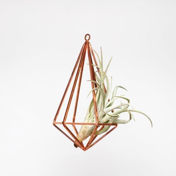 Závesné terárium s rastlinou Prism, 28.5 cm