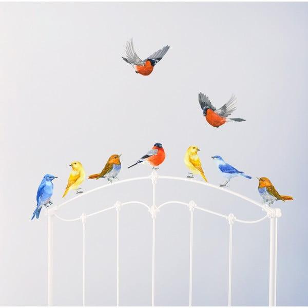 Samolepka na viac použití Watercolour Birds, 30x21 cm