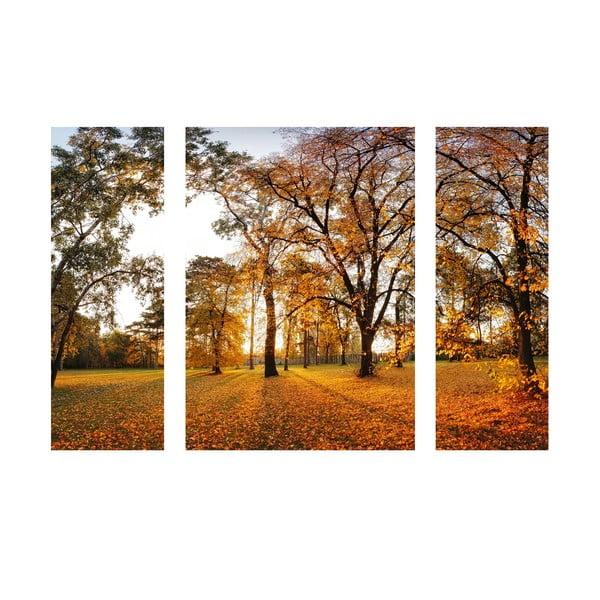 Samolepkový obraz Beautiful Autumn